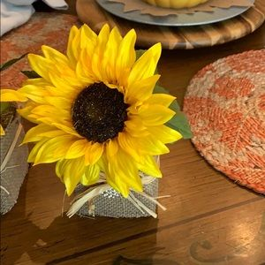 Accents - Small Single Sunflower 🌻 Arrangement for Fall!!!